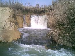 Tour Oasis Fayoum And Wadi El Rayan