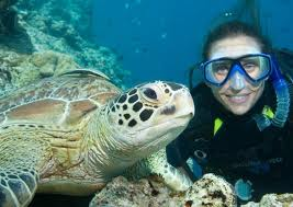 Snorkling and Diving Activities In Sharm