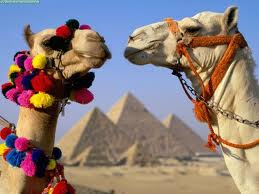 Giza pyramids tour from airport