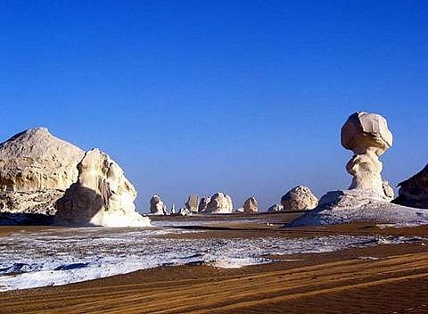 Cairo and Baharyia Safari Tours